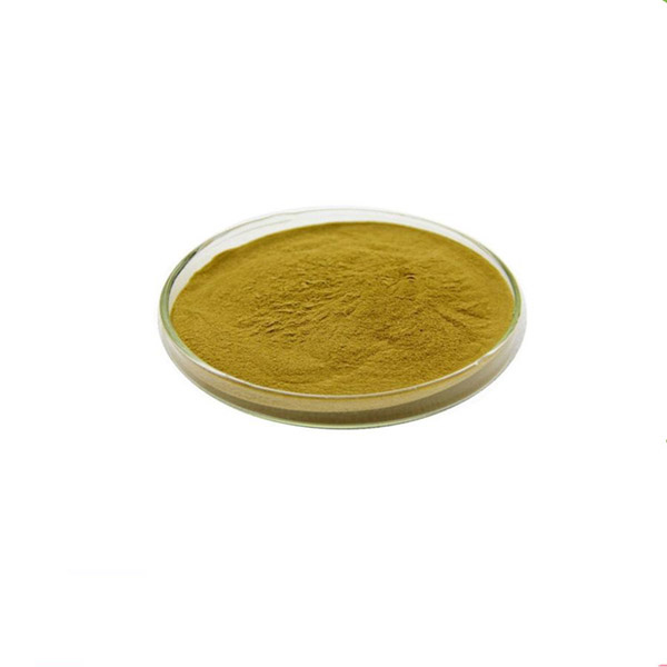 Water Soluble Olive Leaf Extract 40% 3 4-Dihydroxyphenethly Alcohol CAS10597-60-1